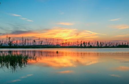 magic colors sunset on the lake image forest