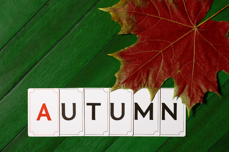 The inscription Autumn on a green wooden cover with dry red maple leaf