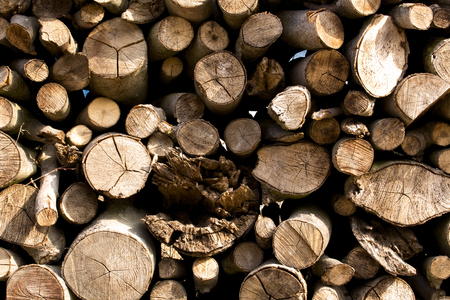 flattened: wood flattened into neat stacks