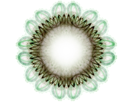 kinetic: fractal radial pattern on the subject of science, technology and design