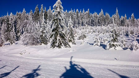 snowlandscape: Beautiful winter landscape in mountains