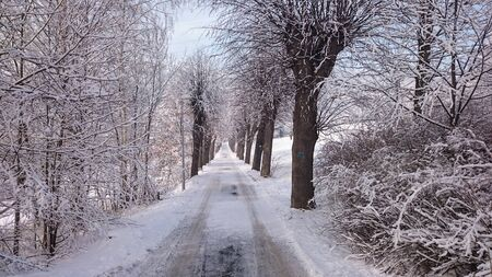 winter road: Winter road in mountains