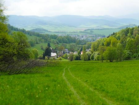 paysage d'été dans les montagnes