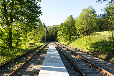 forest railroad: railroad track winding through green summer forest