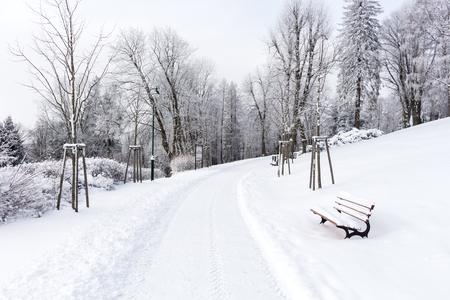 Road in the mountains covered with snow. Winter landscape. The concept of freedom and movement.