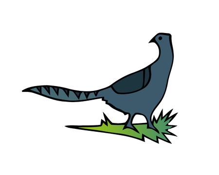 French partridge game bird pheasant family, partridge flying bird. Wild nature bird animal fauna striped cock vector.