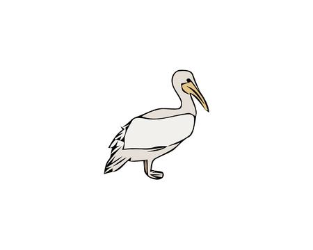 Dalmatian pelican icon. Outline dalmatian pelican vector icon for web design isolated on white background
