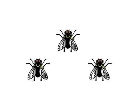 Wektor ilustracja mucha dom owad czarna mucha na białym tle.