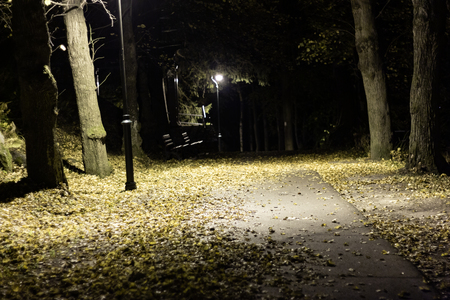 Night park with alley late autumn Stock fotó