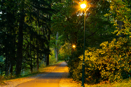 Lamps in the park, autumn and sunset, light and orange colors, romantic scene. 写真素材