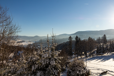 Winter panorama landscape with forest, trees covered snow and sunrise. winterly morning of a new day. winter landscape with sunset, panoramic view 免版税图像