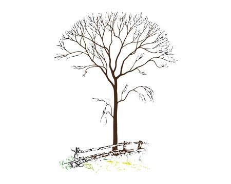 Vector drawing. In the old tree near the fence have grown new branches 일러스트