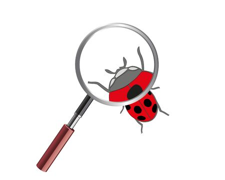 Ladybug under microscope. Ladybird on white background. Cute cartoon ladybug icon.