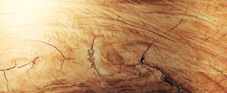 backgrounds and textures concept - wooden texture or background Stok Fotoğraf
