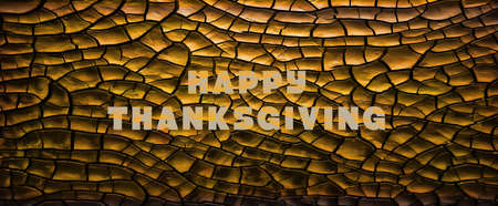 Thanksgiving Concept background. Abstract multi shaded orange cloth background