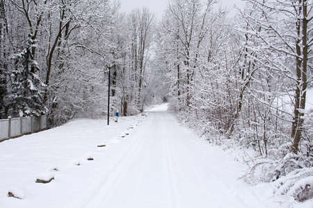 Winter road in mountains