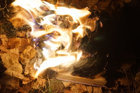 book is on fire