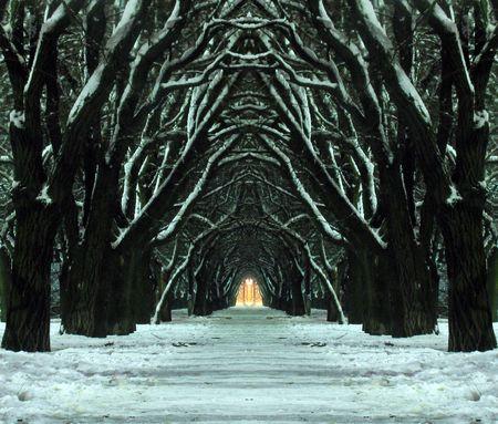 mystic winter park                                photo