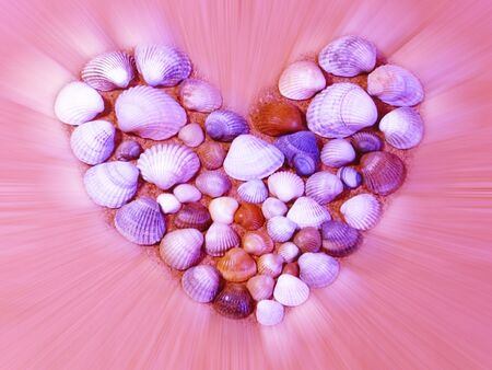 shining heart made of seashells                              Stock Photo - 6367607