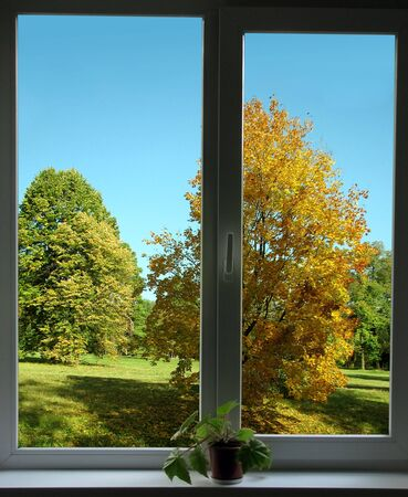 sill: autumnal view from window                         Stock Photo