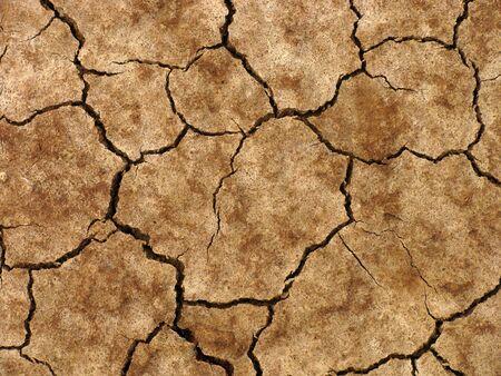 dry cracked ground                               photo
