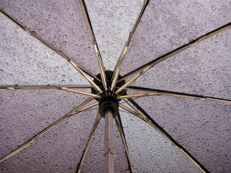 umbrella with rain drops                                photo