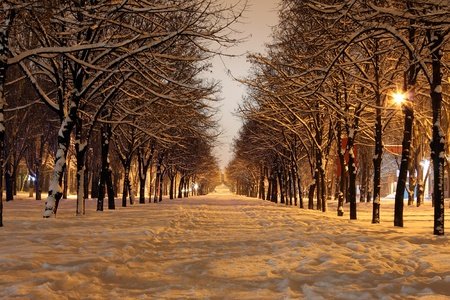 winter street at night Stock Photo - 8443438