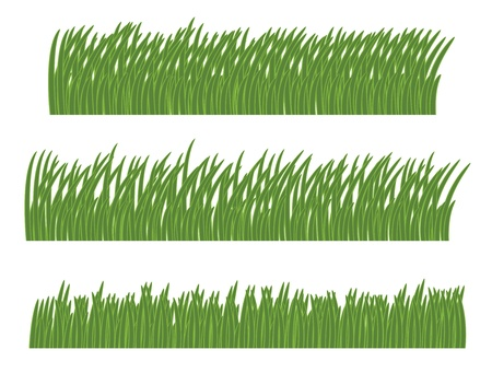 green grass isolated on white vector illustration Иллюстрация
