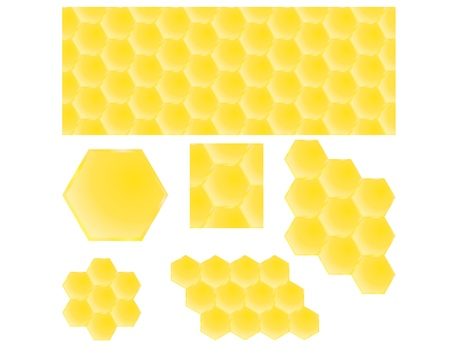 honey combs seamless background and pieces vector illustration Vector