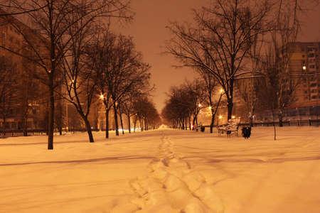 winter night Stock Photo - 12552360