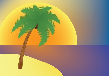 vacation: palm tree on an island at sunset illustration Vector