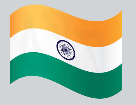 fly-away national Indian flag vector illustration Vector