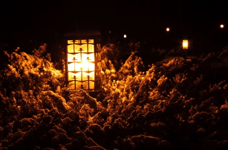 street lantern at winter night in park Stock Photo - 16977980