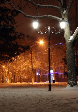 alight street lantern in a park at winter night photo