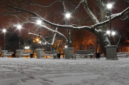 nuit hiver: rue des lanternes dans le parc la nuit d'hiver Banque d'images