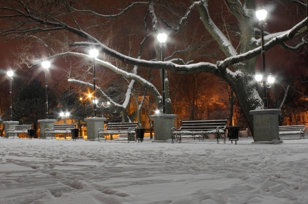avenues: street lanterns in park at winter night