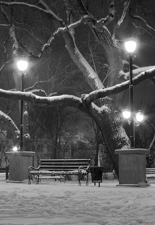 bench and lanterns in park at winter night photo