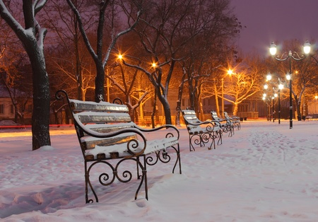 benches in park at winter night photo