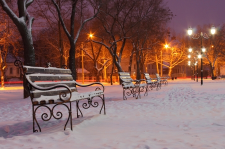 row of benches in park at winter morning photo