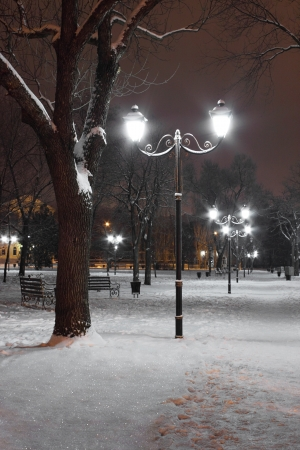 lanterns in park at winter night Stock Photo - 17037772