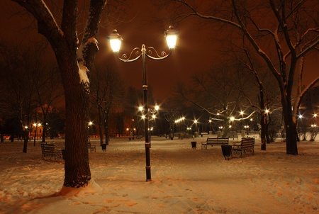 view on park at winter night photo