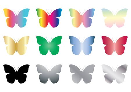 set of color and black butterflies vector illustration Stock Vector - 17717042