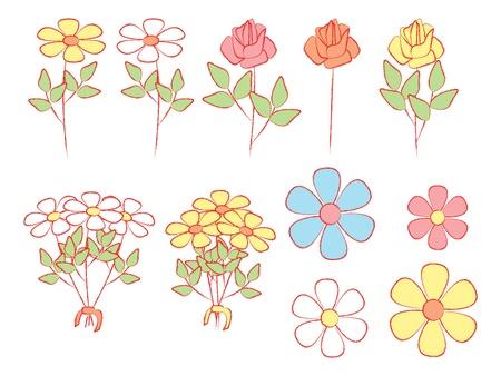 ox eye daisy: set of illustrations of flowers Illustration