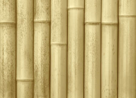 close up of wall made of bamboo planks photo
