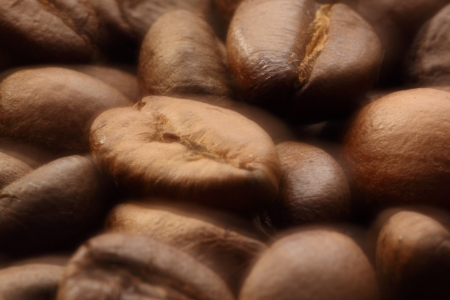 coffee grains: close up of coffee grains in soft focus