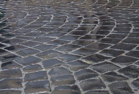 lviv: Detail of wet cobblestone road in Lviv city