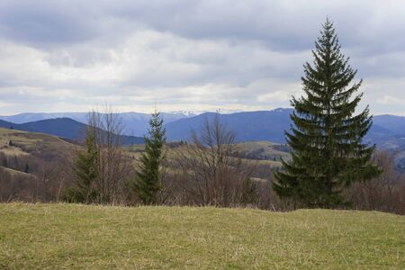 landscape with Carpathian mountains at spring Stock Photo