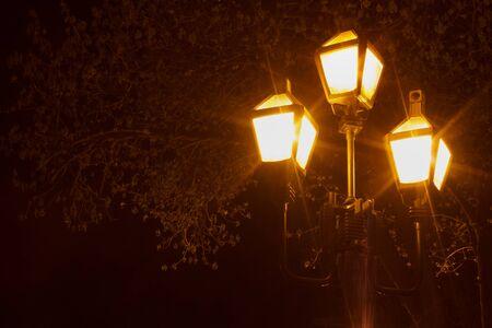 alight: alight lantern on street of Lviv