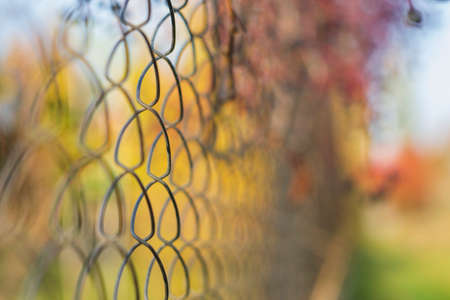 Metal mesh with blurred background from autumn landscape