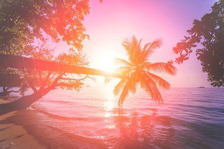 Piękny zachód słońca na plaży w tropikach. Niebo i ocean. Tło